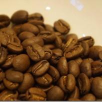 第1回コーヒー研究会-世界一高価な魅惑のコーヒーコピ・ルアクを飲んでみよう-