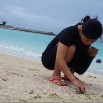 沖縄の旅6日目(サザンビーチ、いなみね、奥武島、沖縄ワールドそしてやどかり)