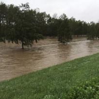 十勝川が氾濫しそう。